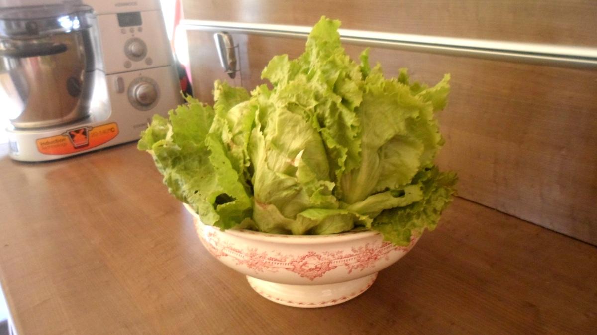 Astuce pour conserver une salade fra che une dizaine de jours les food 39 amour - Comment conserver la salade ...